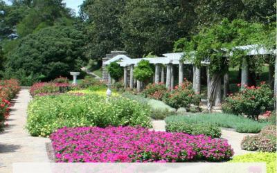 Cómo aprovechar un jardín estrecho y distribuir el espacio