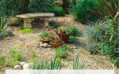 Cómo hacer un jardín en un terreno rocoso y seco