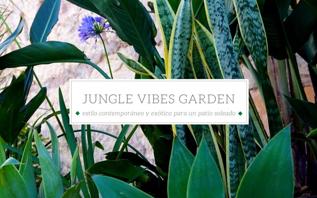 Jungle Vibes en Mallorca