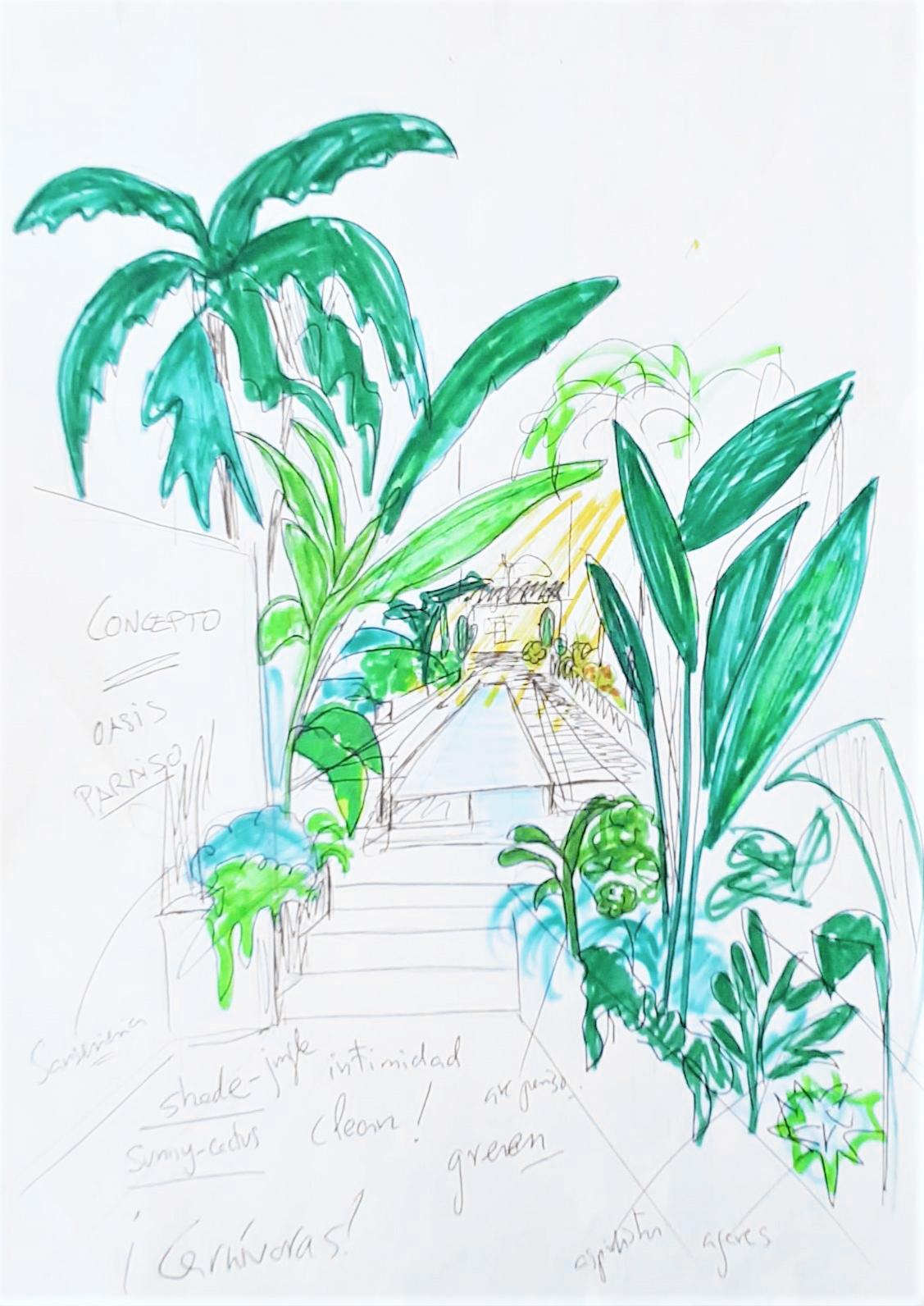 Acuarela mostrando el Jardín Jungle Vibes diseñado por Margalida Nadal. La acuarela muestra un jardín estrecho compuesto por palmeras, plantas tropicales y cactus, y una piscina